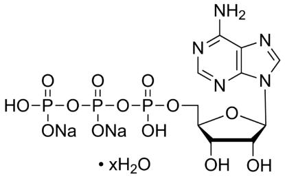 图片 5′-三磷酸腺苷二钠盐水合物 [ATP二钠盐水合物],Adenosine 5′-triphosphate disodium salt hydrate;Grade I, ≥99%, from microbial