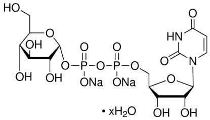 图片 尿苷-5′-二磷酸葡萄糖二钠盐来源于酿酒酵母 [UDPG, UDP-GLC],Uridine 5′-diphosphoglucose disodium salt hydrate from Saccharomyces cerevisiae;≥98%
