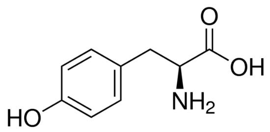 图片 L-酪氨酸,L-Tyrosine;BioUltra, ≥99.0% (NT)