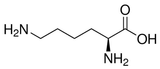 图片 L-赖氨酸,L-Lysine;crystallized, ≥98.0% (NT)