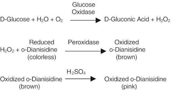 图片 葡萄糖氧化酶来源于黑曲霉,Glucose Oxidase from Aspergillus niger [G.Od., GOx];Type II, ≥10,000 units/g solid (without added oxygen)