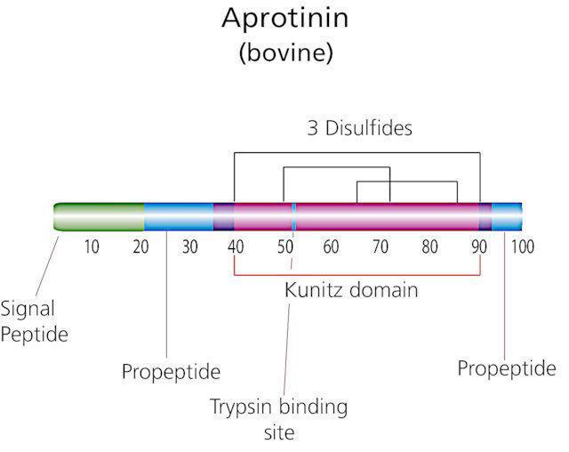 图片 抑肽酶来源于牛肺,Aprotinin from bovine lung [BPTI];lyophilized, ~80% (HPCE), crystalline (fine), white, ≥3500 U/mg