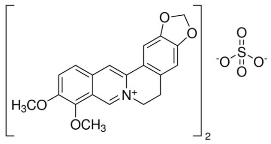 图片 小檗碱半硫酸盐 [硫酸小檗碱],Berberine hemisulfate salt;≥95%