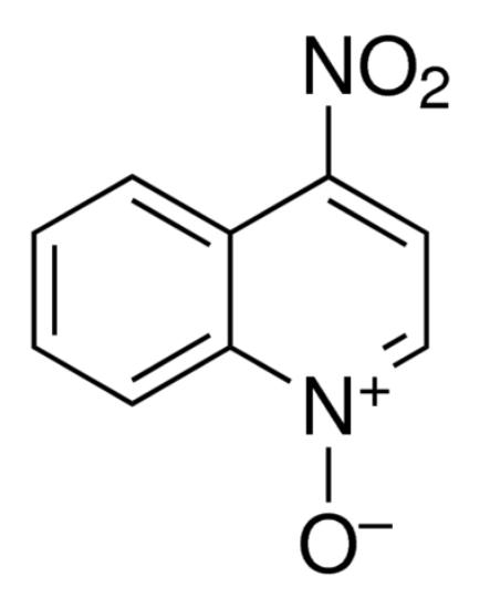 图片 4-硝基喹啉-N-氧化物,4-Nitroquinoline N-oxide [4-NQO];≥98%