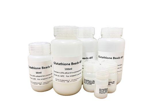 图片 GST标签亲和填料 [谷胱甘肽琼脂糖凝胶],Glutathione Beads 4FF