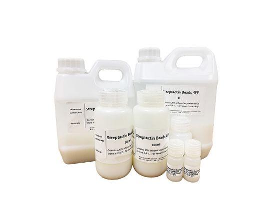 图片 Srep-tag II标签亲和填料 [链球菌素琼脂糖凝胶],Streptactin Beads 4FF