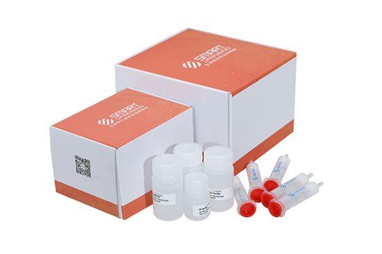 图片 重组蛋白A亲和琼脂糖凝胶纯化试剂盒,AbPur rProtein A Kit