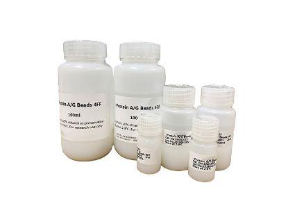 图片 重组蛋白A/G亲和琼脂糖凝胶4FF,rProtein A/G Beads 4FF