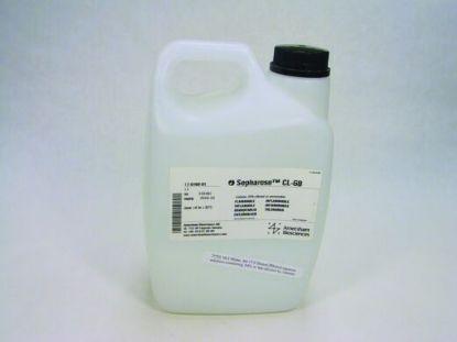 图片 琼脂糖凝胶CL6B,Sepharose CL-6B