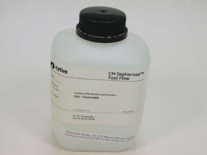 图片 CM琼脂糖凝胶FF [高流速],CM Sepharose Fast Flow