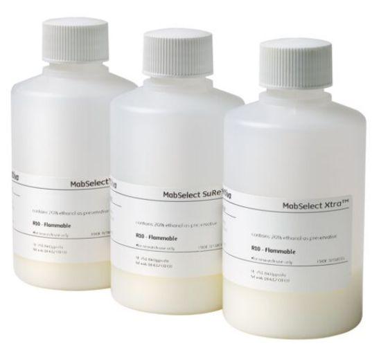 图片 抗体纯选耐碱蛋白A亲和树脂,MabSelect SuRe antibody purification resin
