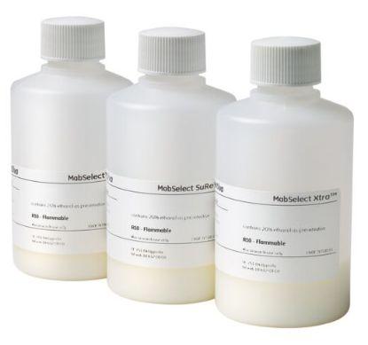 图片 MabSelect Xtra抗体纯化层析树脂,MabSelect Xtra antibody purification chromatography resin