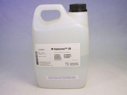 图片 琼脂糖凝胶2B,Sepharose 2B